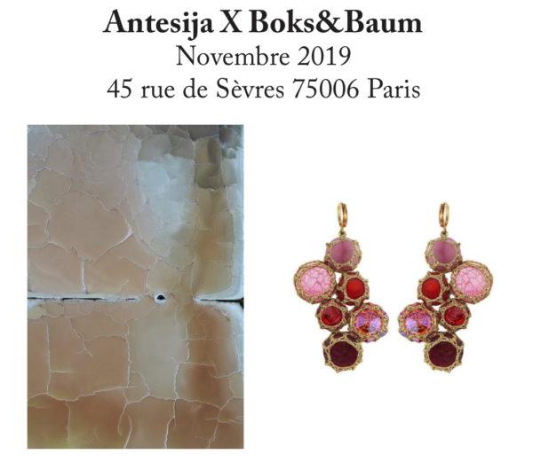 Antesija X Boks&Baum – 45 rue de Sèvres 75006 – Novembre 2018